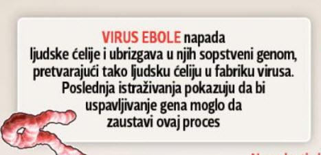 """Grafika objavljena u """"Blic-u""""."""